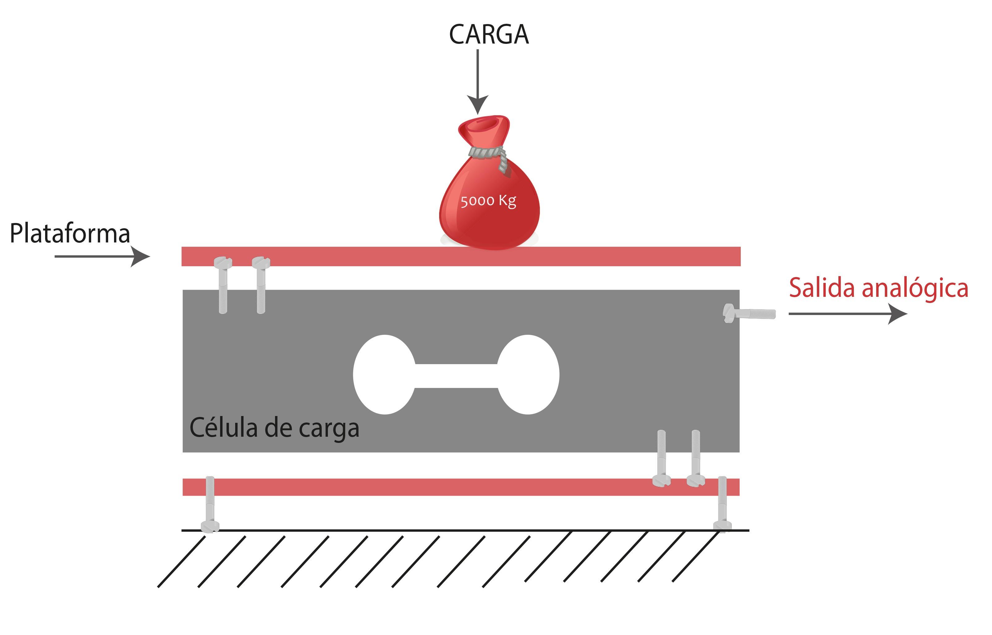 Detalle de báscula y célula de carga