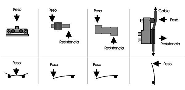 celulas-flexion